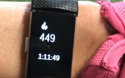 FitBits and Energy Expenditure. Time to get OCD about your activity?